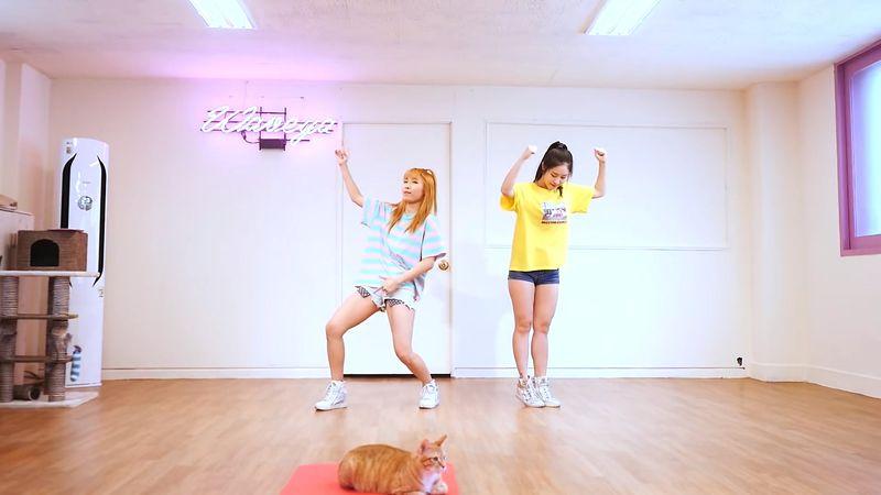 [Waveya]iKON - (B-DAY) cover dance 高清视频在线下载 W201706020111 Waveya2017 第2张