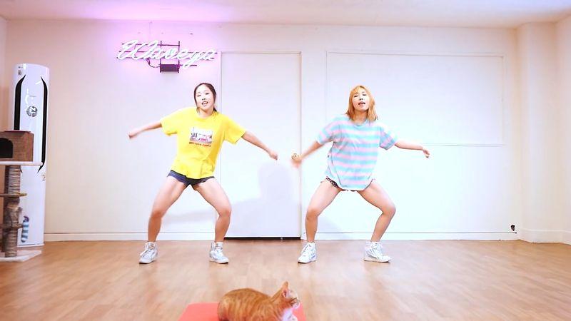 [Waveya]iKON - (B-DAY) cover dance 高清视频在线下载 W201706020111 Waveya2017 第3张