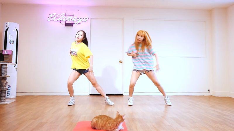 [Waveya]iKON - (B-DAY) cover dance 高清视频在线下载 W201706020111 Waveya2017 第4张